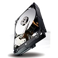 Seagate Constellation ES.3 4000GB
